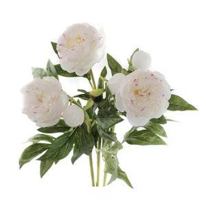 Купить Цветок искусственный MYBLUMM 0162 Пион с мелкими розовыми лепестками цвет белый