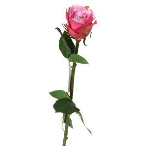 Купить Цветок искусственный Арти М 23-265 50 см