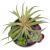 Цветок искусственный Арти М 269-103 Суккулент в горшке 11*16 см зеленый