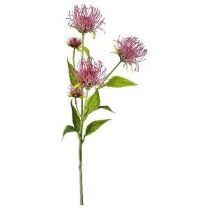 Купить Цветок искусственный Арти М 21-1002 Леукоспермум сердцелистный пурпурно-красный 74 см цвет зелёный/розовый