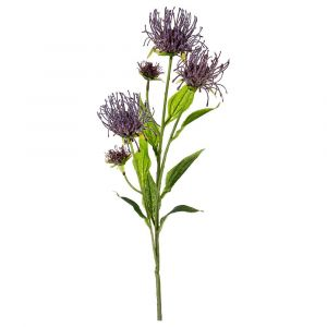 Купить Цветок искусственный Арти М 21-1003 Леукоспермум сердцелистный дымчатый 74 см цвет зелёный/фиолетовый
