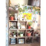 Купить Стеллаж ВПК Polini Home Smart каскадный 10 цвет винтаж