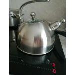 Чайник на плиту TalleR Гордон TR-1339 2,5 л цвет нержавеющая сталь